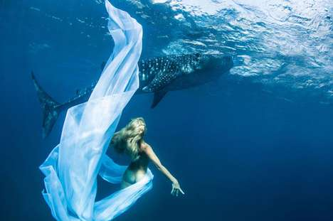 Whale Shark Fashion Shoot