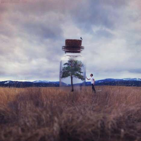 clever photo manipulations