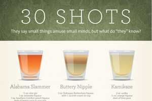 This Infographic Explores 30 Shots of Alcohol with Funny Names