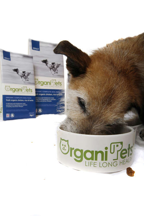 Health-Promoting Pet Food