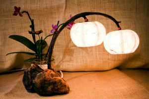 The Hanji Flora Lamps Combine Nature with Lighting