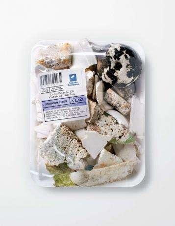 Garbage Seafood II