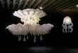 Jellyfish Chandeliers 2
