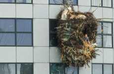 Giant Human Nest