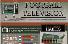 Frequent Football Viewership Charts - Tributing the Upcoming 2012-2013 NFL Playoffs