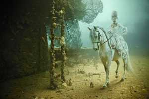 Andreas Franke Brings Shipwrecks to Life in Underwater Gallery