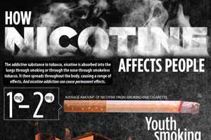 This Chart Explores the Effect of Nicotine on Your Body