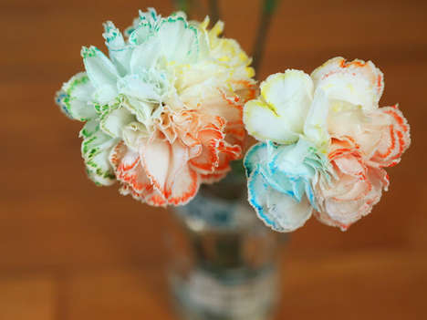 DIY Rainbow Flowers