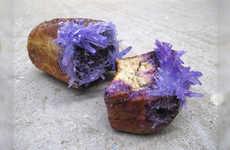 Artistic Moldy Bread