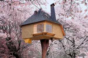 Philip Jodidio Focuses on Fantasy Tree Houses in His New Book