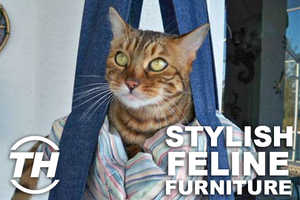 Jaime Neely Unveils Furniture for Cats That Keep Kitties Chic
