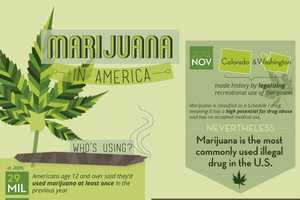 The Infographic Objectively Showcases America's Stance on Marijuana