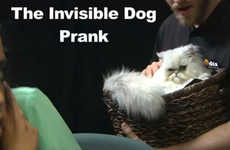 Invisible Dog Pranks