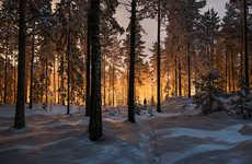 Frigid Glowing Photography