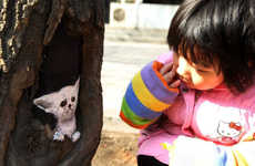 Wang Yue's Tree Hole Art Adds Color to Shijiazhuang, China Streets