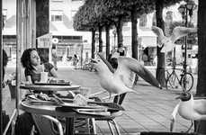 Elusive Street Drama Captures