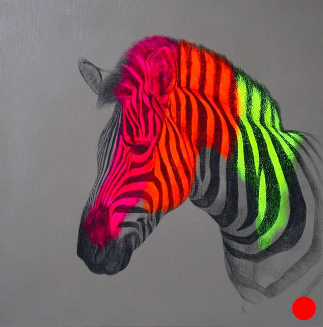 Florescent Zoological Sketches (UPDATE)