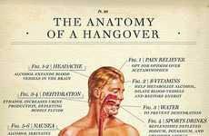 Scientific Hangover Guides
