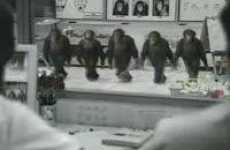 Riverdancing Chimpanzees