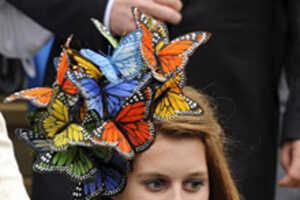 Princess Beatrice's Butterfly Bonnet