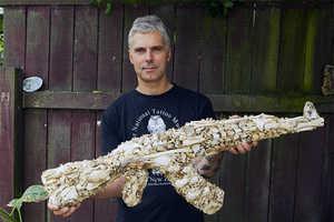 Bruce Mahalski's Bone Artwork Gun is Made of Animal Bones