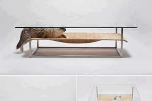 This Coffee Table for Cats by E&Y is Perfect for Any Pet Owner