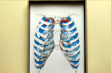 Crafty Anatomy Collages - The Anatomy Box Cleverly Explains the Human Body to Kids