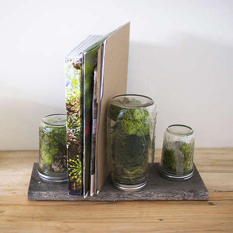 DIY Office Terrarium