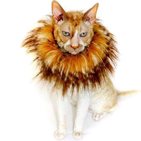 Lionizing Cat Accessories - These Cat Collars Give Household Cats a Mane and a Fierce Attitude