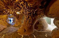Immersive Organic Installations
