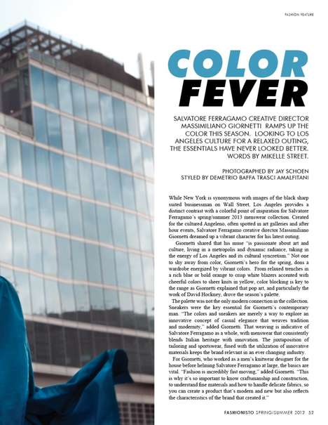 Color Fever by Jay Schoen