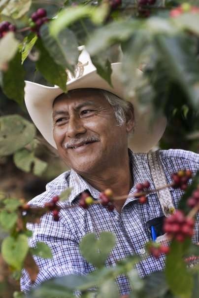 Sustainable Harvest Coffee Importers