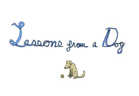 Charming Canine Life Advice - The Lessons from a Dog Series by Patrick Moberg Will Make You Smile