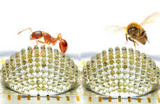 Insect-Inspired Camera Lenses
