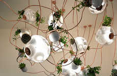 Glass Pendant Planters - The 38 Series by Omer Arbel is Part Pot, Part Lamp