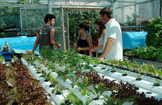 27 Urban Farming Projects