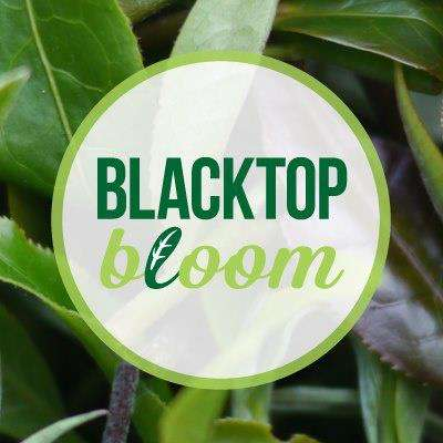 Weekly Aquaponic Deliveries - Blacktop Bloom is a Social Enterprise and Urban Farm