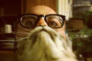 The Cat Beards Meme Helps You Exploit Your Cat in Humorous Fashion