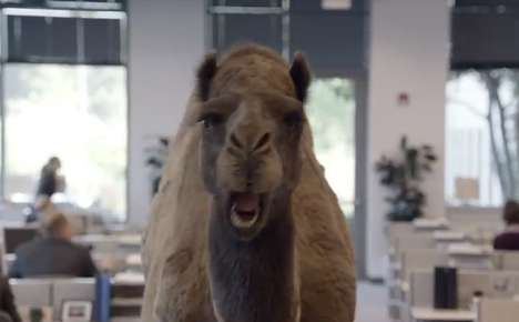how to make a camel hump hijab