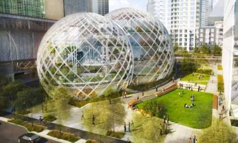 Amazon biosphere office