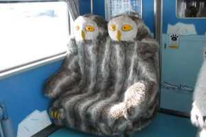 These Animal Train Seats are Sure to Excite and Scare People