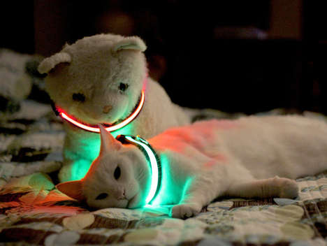 illuminated pet collars