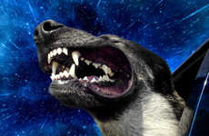 Time Warp Dog Photography - The 'Warp Dog' Series by Benjamin Grelle Depicts Supersonic Canines
