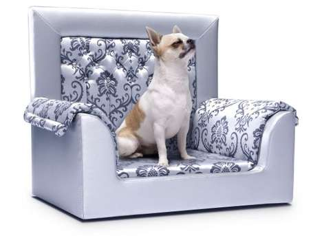 Luxurious Pet Accessories