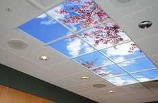 Sky Ceilings