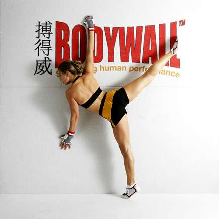 Bodywall