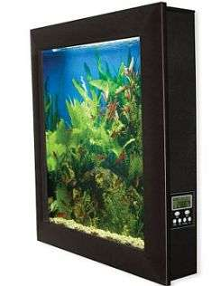 Wall Mounted Aquarium