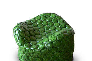 Green Designs for Soccer Fans