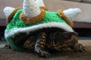 Turn Your Pet Turtle into King Koopa with this Knitting Tutorial