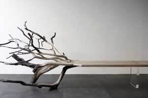 The 'FallenTree' Bench Merges Natural and Artificial